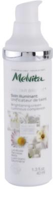 Melvita Nectar Bright крем за озаряване на лицето 1