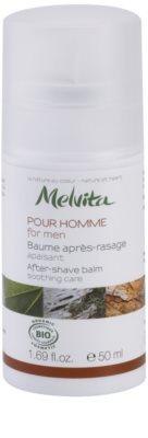 Melvita Pour Homme успокояващ балсам след бръснене