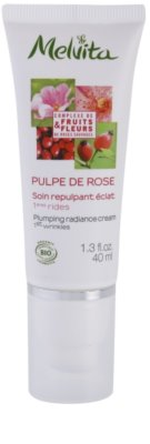 Melvita Pulpe de Rose роз'яснюючий крем проти перших ознак старіння шкіри