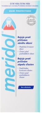 Meridol Dental Care elixir bocal sem álcool 2