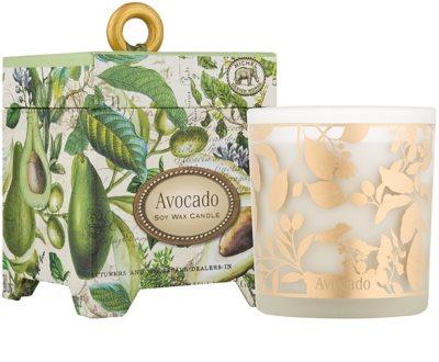 Michel Design Works Avocado świeczka zapachowa   w szkle (65-80 Hours)