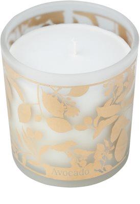 Michel Design Works Avocado świeczka zapachowa   w szkle (65-80 Hours) 1