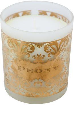 Michel Design Works Peony vela perfumado  em vidro (65-80 Hours) 1