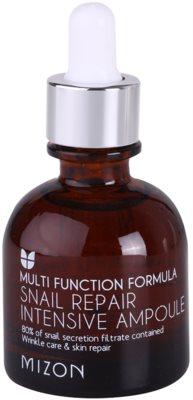 Mizon Multi Function Formula ser regenerator antirid