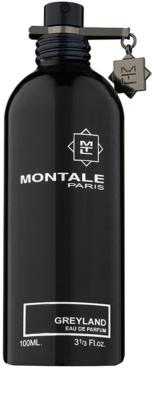 Montale Greyland eau de parfum teszter unisex