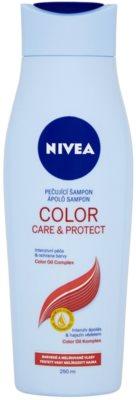 Nivea Color Care & Protect шампунь для яскравого кольору з макадамовою олійкою