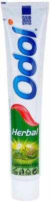 Odol Herbal zobna pasta za občutljive dlesni