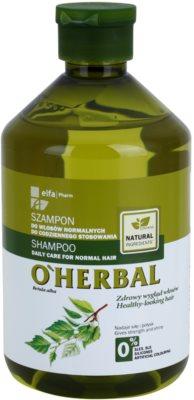 O'Herbal Betula Alba champô para uso diário para cabelo normal