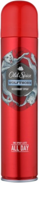 Old Spice Wolfthorn Deo Spray for Men