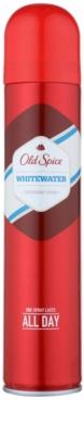 Old Spice Whitewater deospray pentru barbati