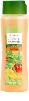 Oriflame Nature Secrets champô e condicionador 2 em 1 para todos os tipos de cabelos
