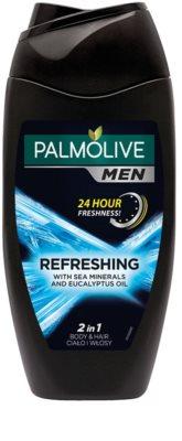 Palmolive Men Refreshing gel za prhanje za moške 2v1