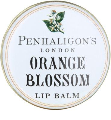 Penhaligon's Anthology Orange Blossom balzam na pery pre ženy 3