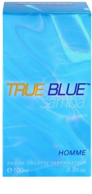Perfumer's Workshop True Blue Samba eau de toilette férfiaknak 4