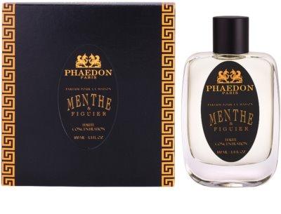 Phaedon Mint and Fig spray lakásba