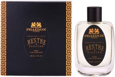 Phaedon Mint and Fig spray para o lar