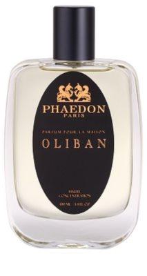 Phaedon Oliban spray pentru camera 2