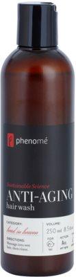 Phenomé Head in Heaven champô rejuvenescedor para cabelos secos e pintados