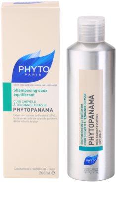 Phyto Phytopanama champú para cuero cabelludo graso 2