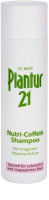 Plantur 21 champú nutri-cafeína  para cabello teñido y dañado
