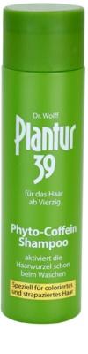 Plantur 39 champú con cafeína para cabello teñido y dañado