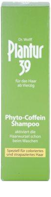 Plantur 39 kofeínový šampón pro farbené a poškodené vlasy 3