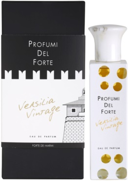 Profumi Del Forte Versilia Vintage Ambra Mediterranea parfumska voda uniseks