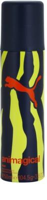 Puma Animagical Man dezodor férfiaknak