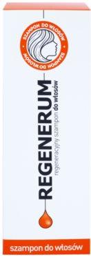Regenerum Hair Care champô regenerador para cabelo seco a danificado 2
