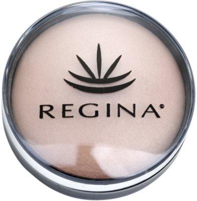 Regina Colors Highlighter