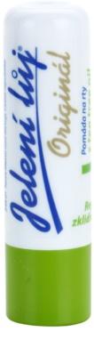 Regina Original pomada para os lábios com óleo de chá de árvore e erva cidreira