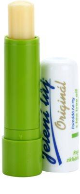 Regina Original Lippenbalsam mit Teebaumöl und Zitronenmelisse 1