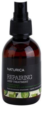 Rica Naturica Repairing Deep hloubkově regenerační kúra pro velmi suché a poškozené vlasy