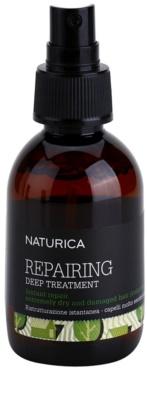 Rica Naturica Repairing Deep Tratamentul profund de restaurare pentru par foarte uscat si deteriorat