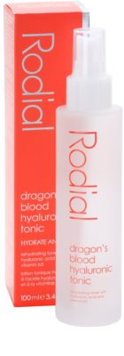 Rodial Dragon's Blood tonikum 2