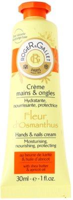 Roger & Gallet Fleur d´ Osmanthus eine Crem zum Schutz von Händen und Nägeln mit Sheabutter und Aprikosenöl