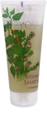 RYOR Hair Care szampon ziołowy z panthenolem