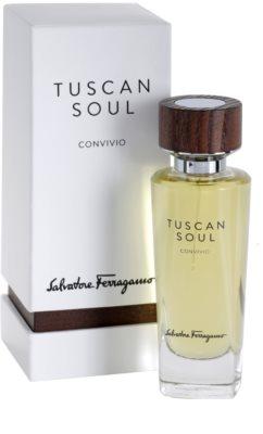 Salvatore Ferragamo Tuscan Soul Quintessential Collection Convivio Eau de Toilette unisex 1