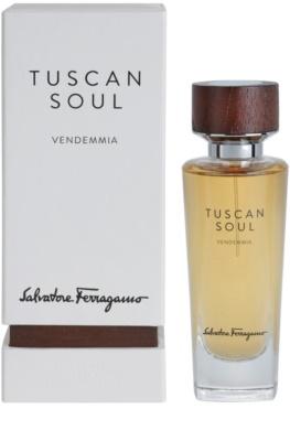 Salvatore Ferragamo Tuscan Soul Quintessential Collection Vendemmia eau de toilette unisex