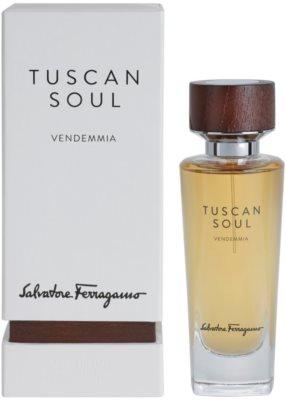 Salvatore Ferragamo Tuscan Soul Quintessential Collection Vendemmia toaletna voda uniseks