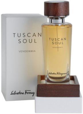 Salvatore Ferragamo Tuscan Soul Quintessential Collection Vendemmia toaletna voda uniseks 1
