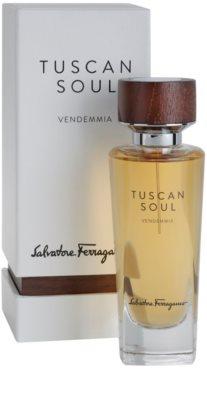 Salvatore Ferragamo Tuscan Soul Quintessential Collection Vendemmia toaletna voda uniseks 2
