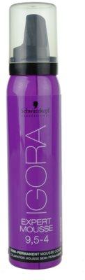 Schwarzkopf Professional IGORA Expert Mousse pena za barvanje za lase