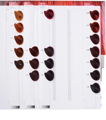 Schwarzkopf Professional IGORA Royal barva na vlasy 6