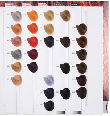 Schwarzkopf Professional IGORA Royal barva na vlasy 9