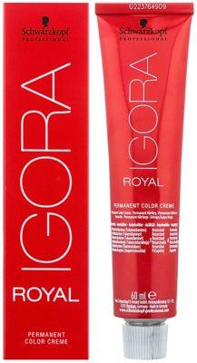 Schwarzkopf Professional IGORA Royal barva za lase