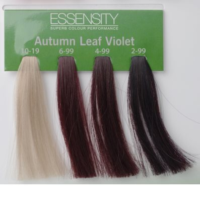 Schwarzkopf Professional Essensity Colour hajfesték 25