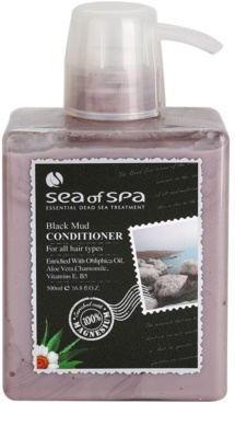 Sea of Spa Essential Dead Sea Treatment Conditioner Schwarzer Schlamm
