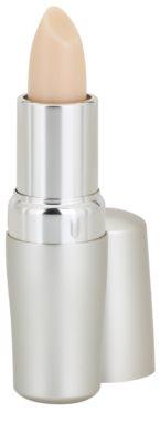 Shiseido The Skincare bálsamo protector labial  SPF 10 1
