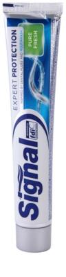 Signal Expert Protection Pure Fresh Zahnpasta für den kompletten Schutz Ihrer Zähne